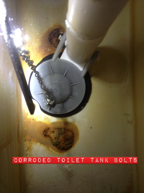 Toilet tank bolts